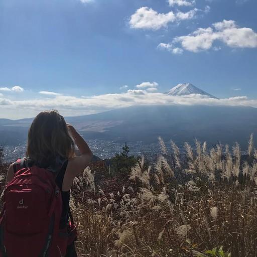 הנוף אל הר פוג'י במהלך המסלול