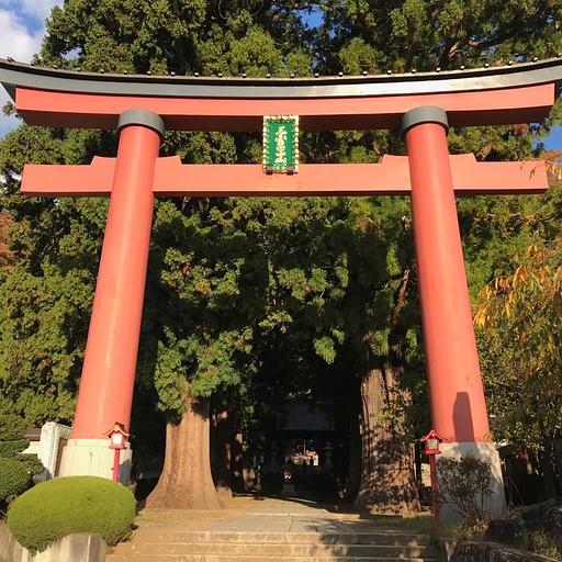 השער בסוף המסלול
