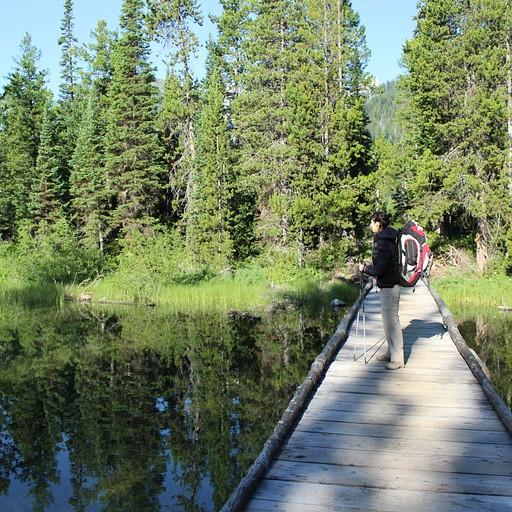 השביל ליד Taggart lake