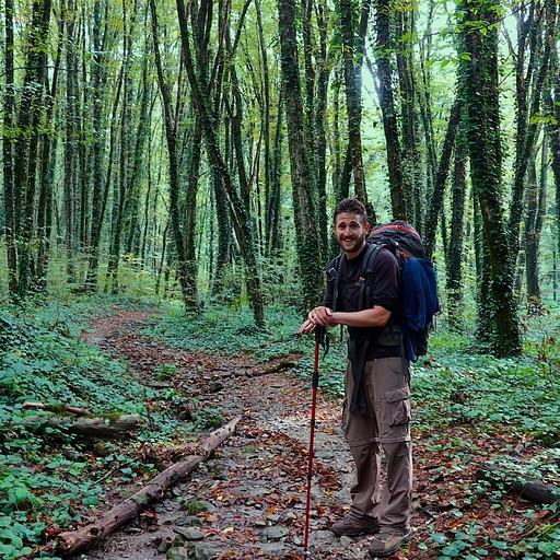 הליכה בג'ונגל
