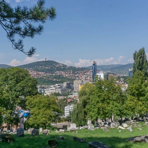 נוף על העיר מבית הקברות היהודי, מקום שהיווה קו חזית במלחמה