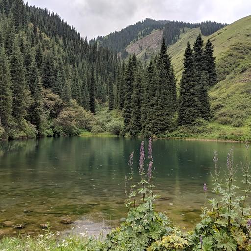 האגם המדומה