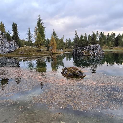 אגם פלמיארי בבוקר