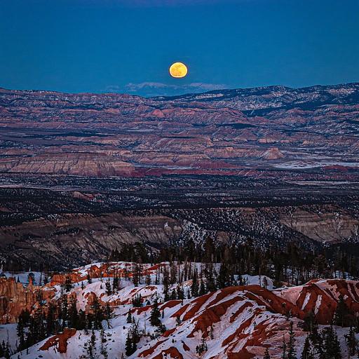 הירח עולה והוא פשוט נראה ענק