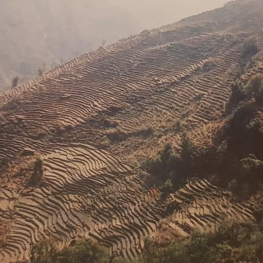 כפר סירונג