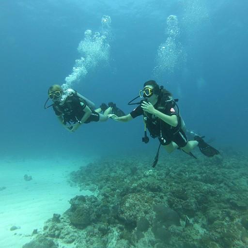 צלילה בג'וני ובמנירווה