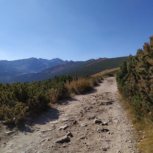 המסלול לאגם הראשון