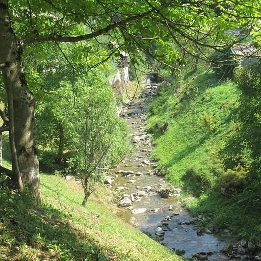 הנחל של הכפר