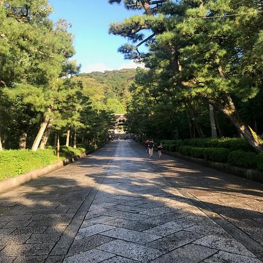 פארק מארויאמה
