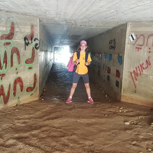 המנהרה בדרך לנחל עמוד