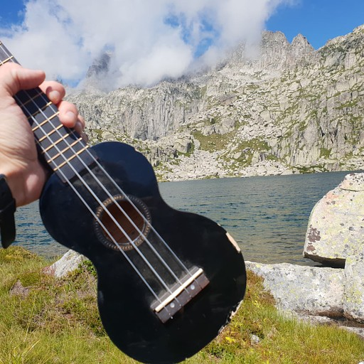 ג'ימג'ומים באגם