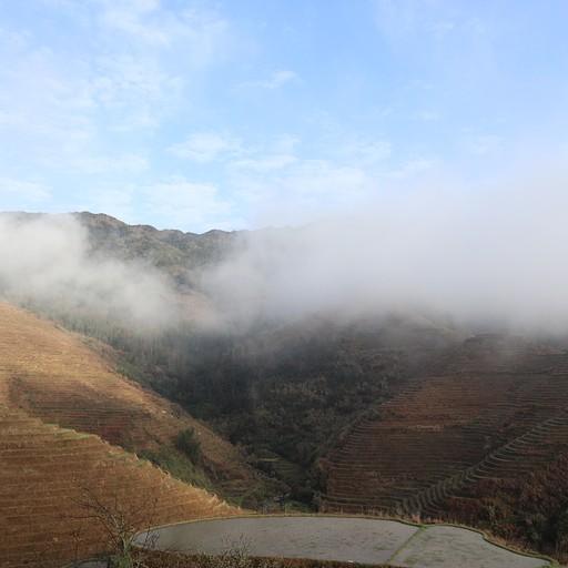 הנוף מההוסטל בבוקר