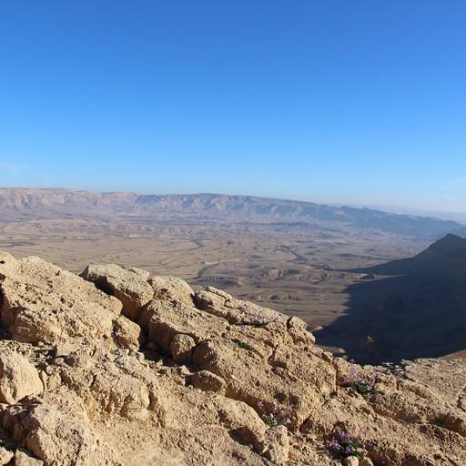 המכתש הגדול מנ.ג 581