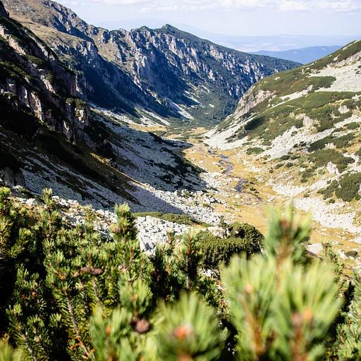 העמק בו נמצאת הבקתה מאליוביצ'ה