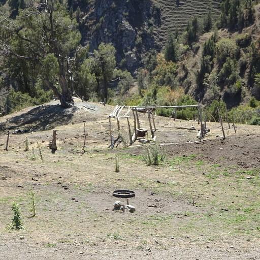 הבית הנטוש בירידה מהפס Too-Jailoo (משמאל יש סימון על העץ)